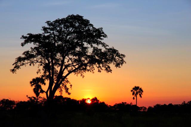 2011-05-27 Botswana safari Solnedgang