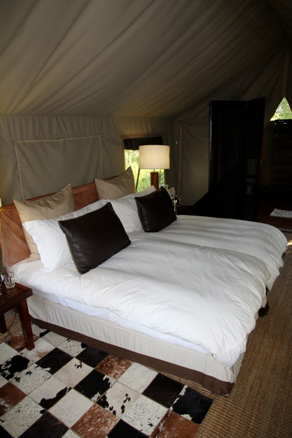 2011-05-27 Botswana safari Telt