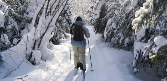 2013-02-11 Skiforeningen.jpg