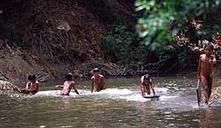 5 bader i vannet 0504