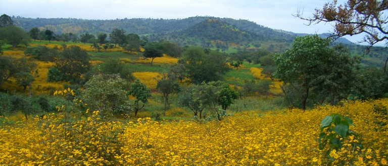 Etiopia – et stolt land.