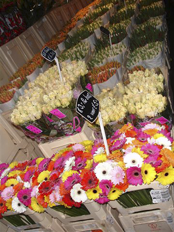 Amsterdam Jul 0612 Blomster