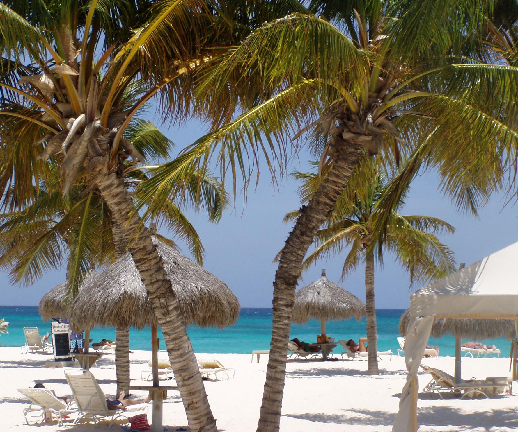 Aruba Christine 0709 Palmer