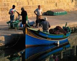 Blå båt i havna 0105
