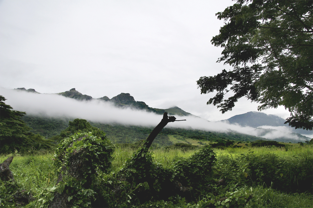 Fiji Hilde 0608 Tåke