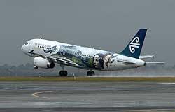 Fly letter1103