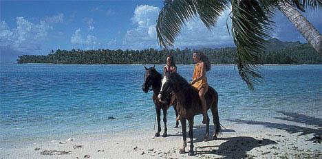 Hester på strand0406