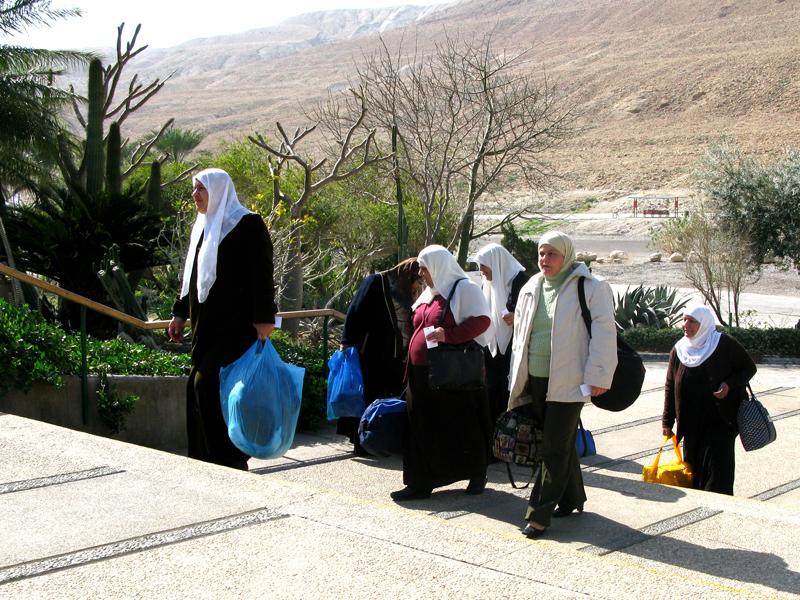 Israel Ein Gedi 0806 Trapp