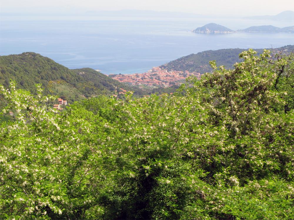 Italia Elba 0808 Hav