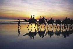 Kameler0506