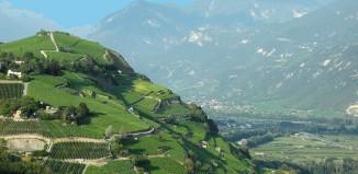 Reiseliv Frankrike Rhone 1002 Hoved