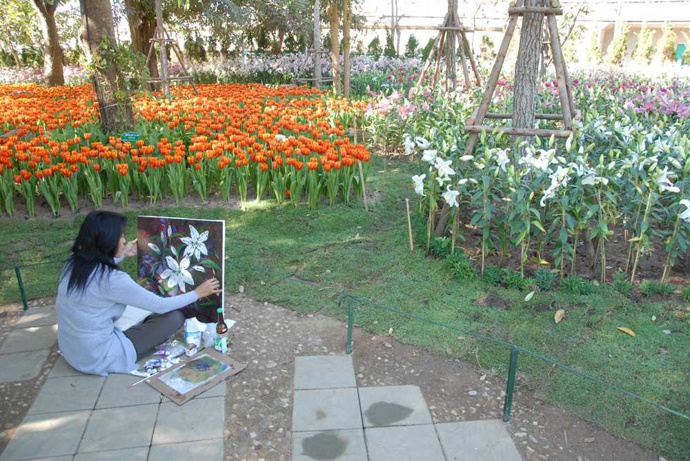 Reiseliv Thai-Kamb 2010-11-23 DSC_0023