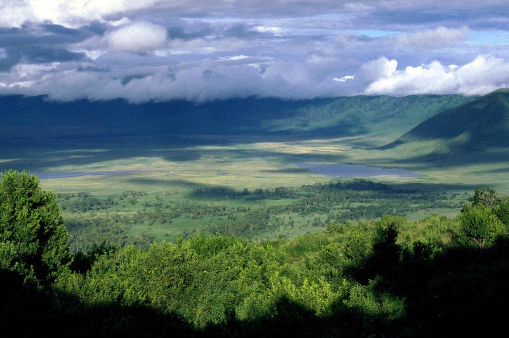 Tanzania Ngorongoro 0705 Utsikt 1