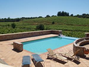 Fredelig svømmebasseng omgitt av vinranker.