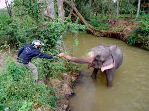Motorsykkeltur gjør det enkelt å komme i nærkontakt med alle slags opplevelser - Artig hilsen på Sri Lanka.