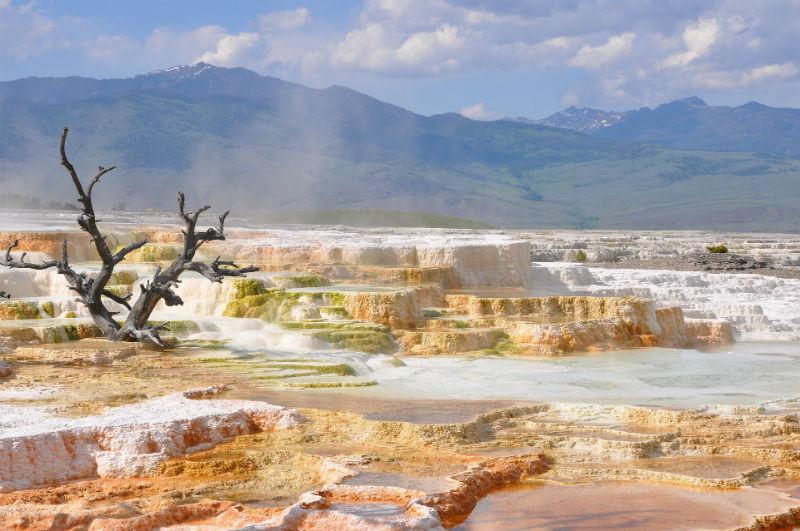 Yellowstone National Park med sine berømte naturattraksjoner; geysirer og varme kilder.