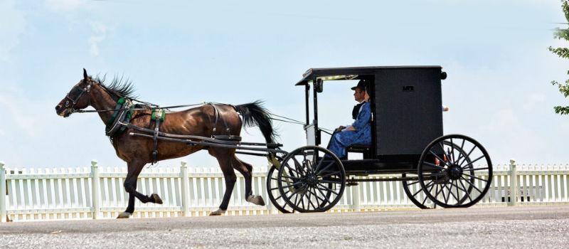 Er du over i Pennsylvania, vil du se slike kjøredoninger. Dette er den kristne gruppen Amish som ikke bruker noen former for moderne teknologi, og fortsatt kjører med hest og vogn. Arkivfoto Per Henriksen
