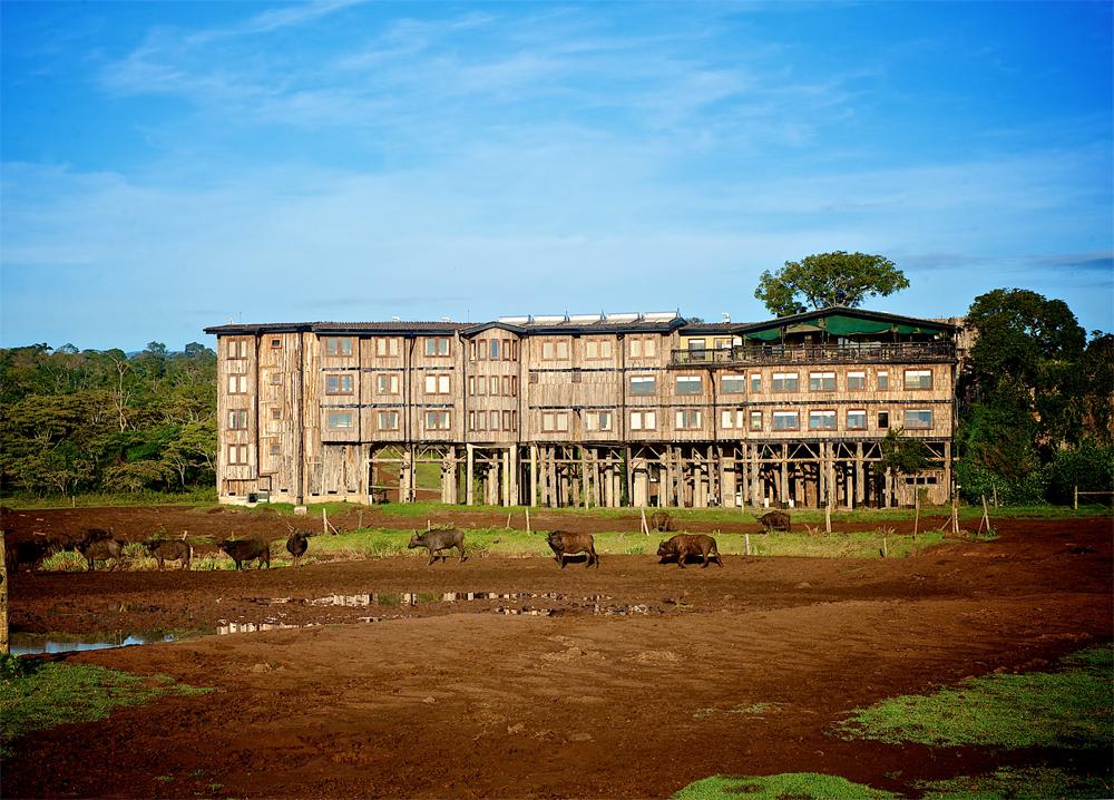 Treetops Lodge med sin helt spesielle rustikke arkitektur.