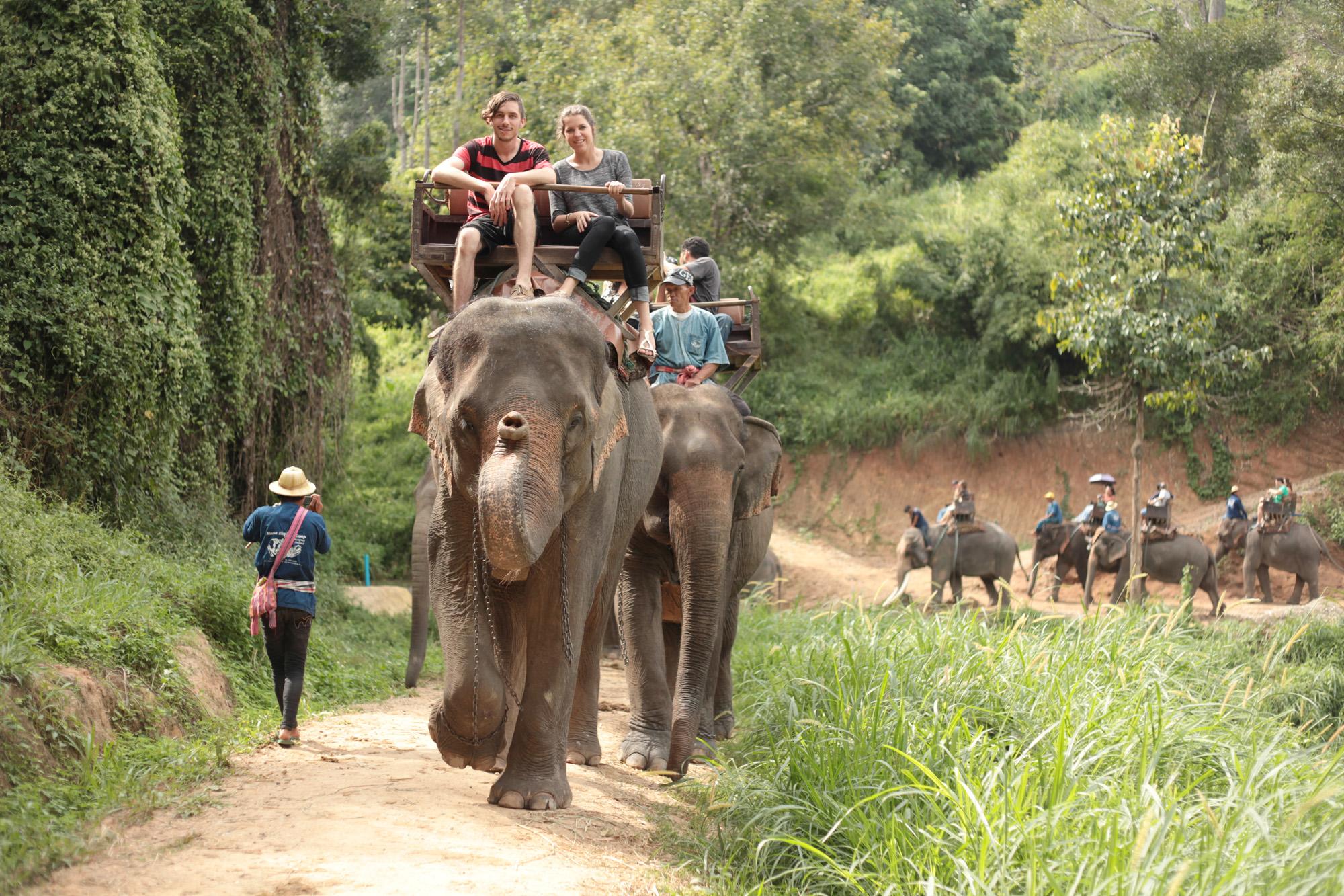 En halv dag på elefantryggen dypt inn i regnskogen i Thailand, i fjellene rundt Chiang Mai.