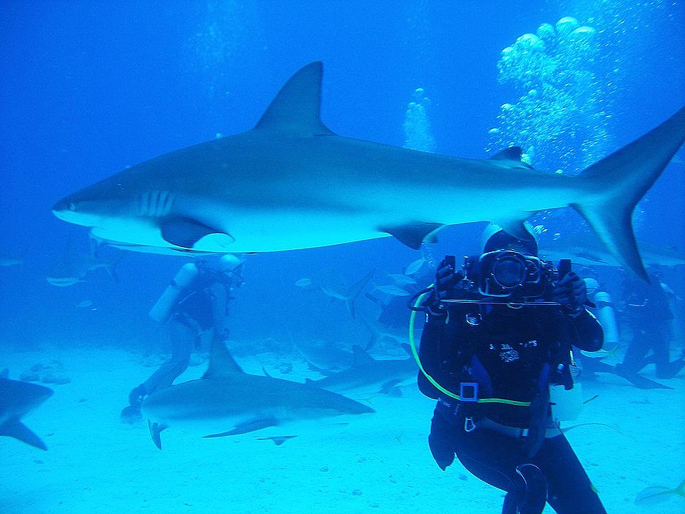 Nassau har vært et populært reisemål for turister spesielt siden 1969. Foto: Pixabay