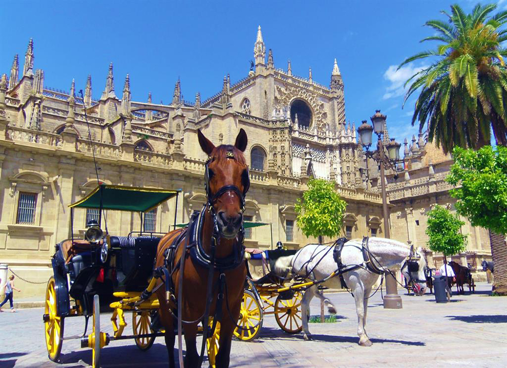 oppleve i Sevilla