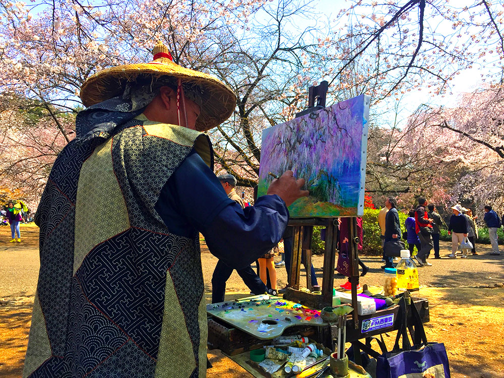 Når Japans kirsebær blomstrer