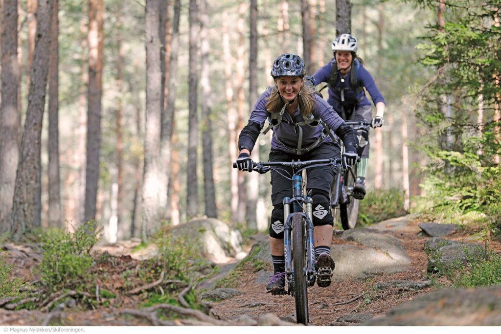 Å sykle i skog