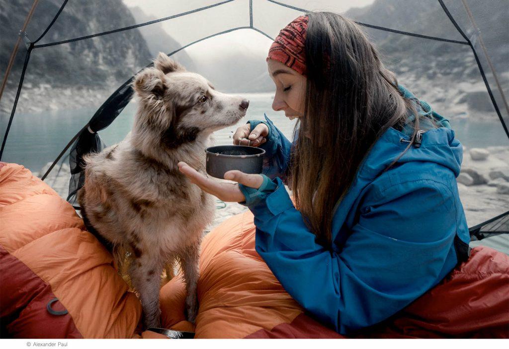 Campingplass eller camping i telt
